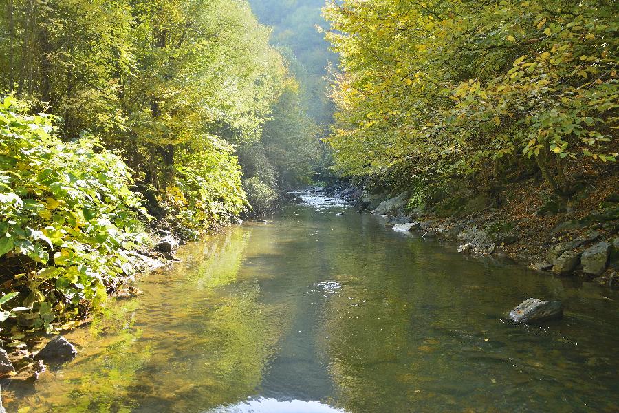 река Батулия