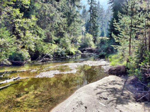 река Доспатска