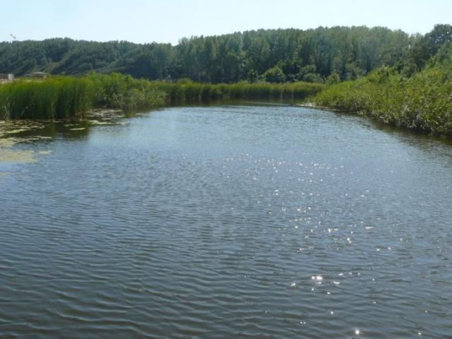 река Силистар