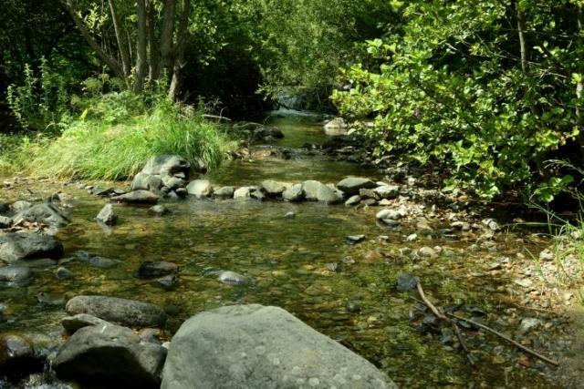 река Струма