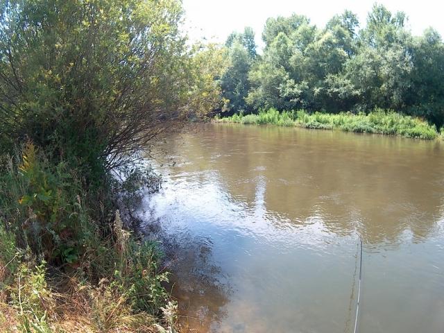 река Тополница
