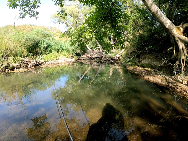 река Велека
