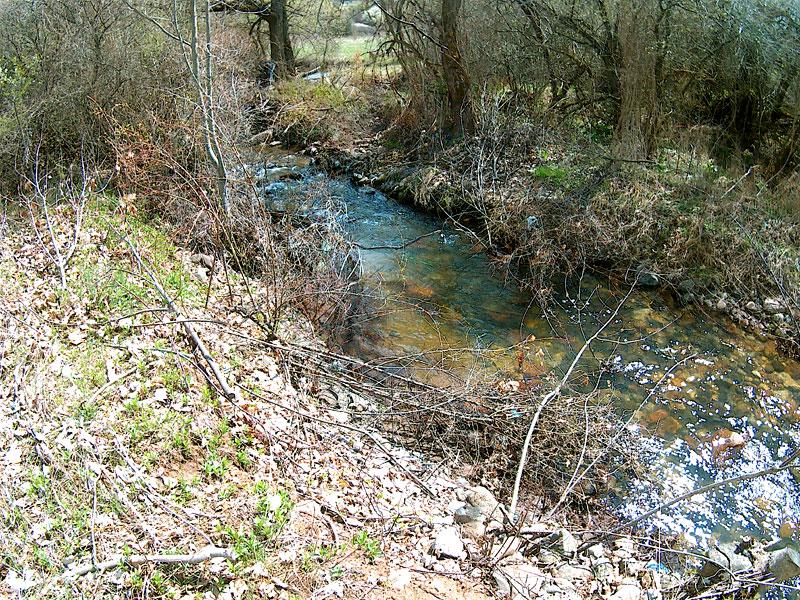 река Височица