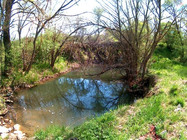 река Върбница
