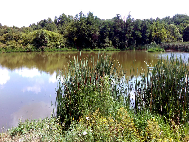 езерото Фургона