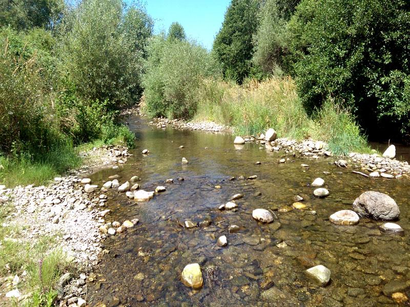 река Кюстендилска Бистрица