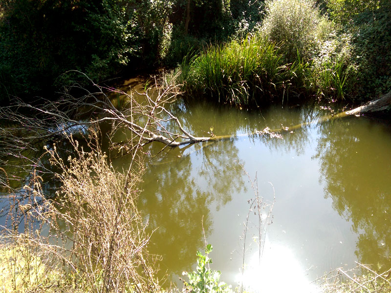 река Росенска