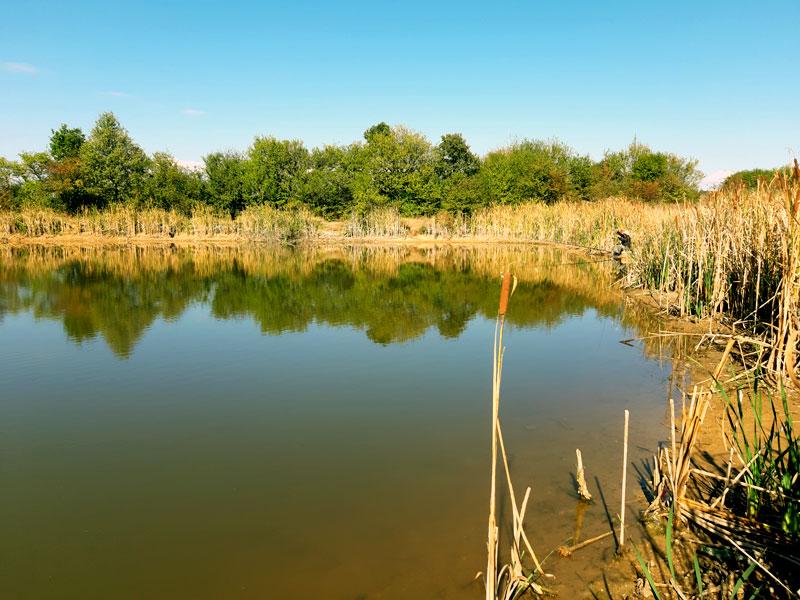 езеро Дъбижовец