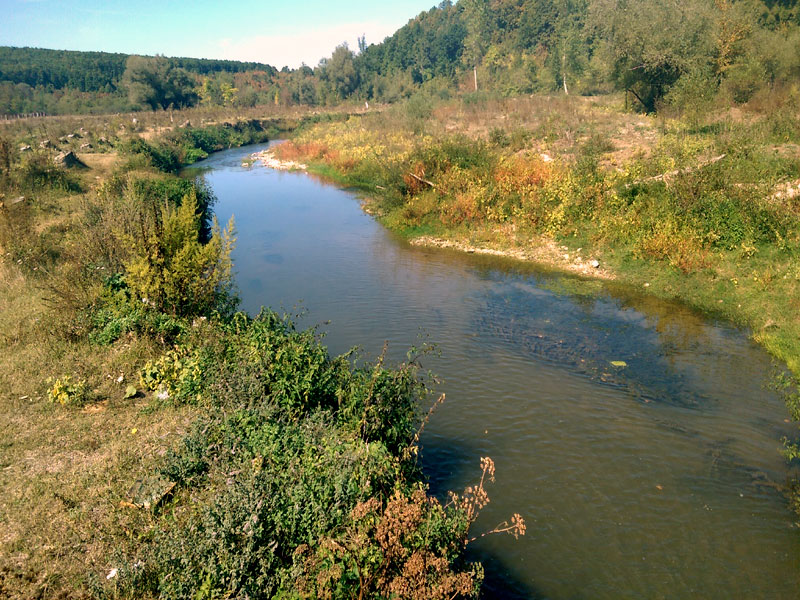 река Въртешница