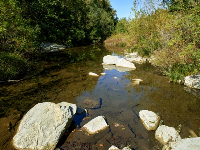 река Веселина