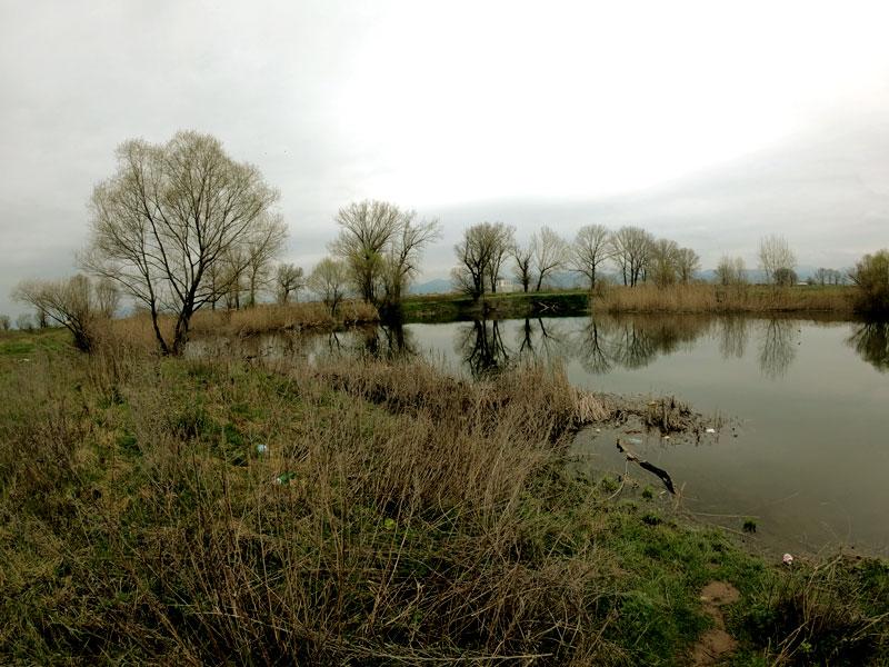 езеро Патичарника